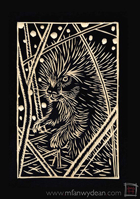 porcupineslide