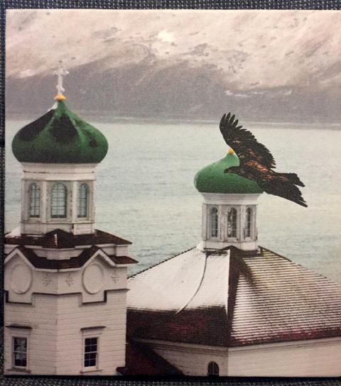 32_Adolescent Eagle in Dutch_Tom Fanatiaweb
