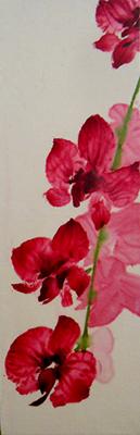 Orchid IIIweb