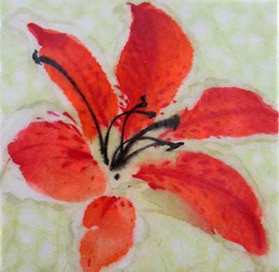 Tiger Lilyweb